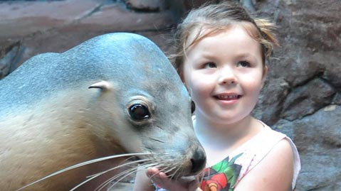 Child with a sea lion
