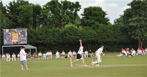'Merlin's Magic Wand Cricket Day' accompanying image 1